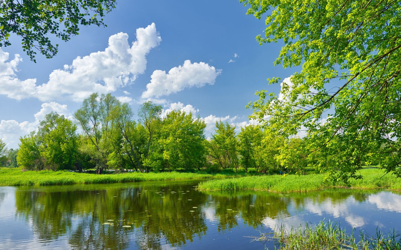 картинки лето на рабочий стол природа