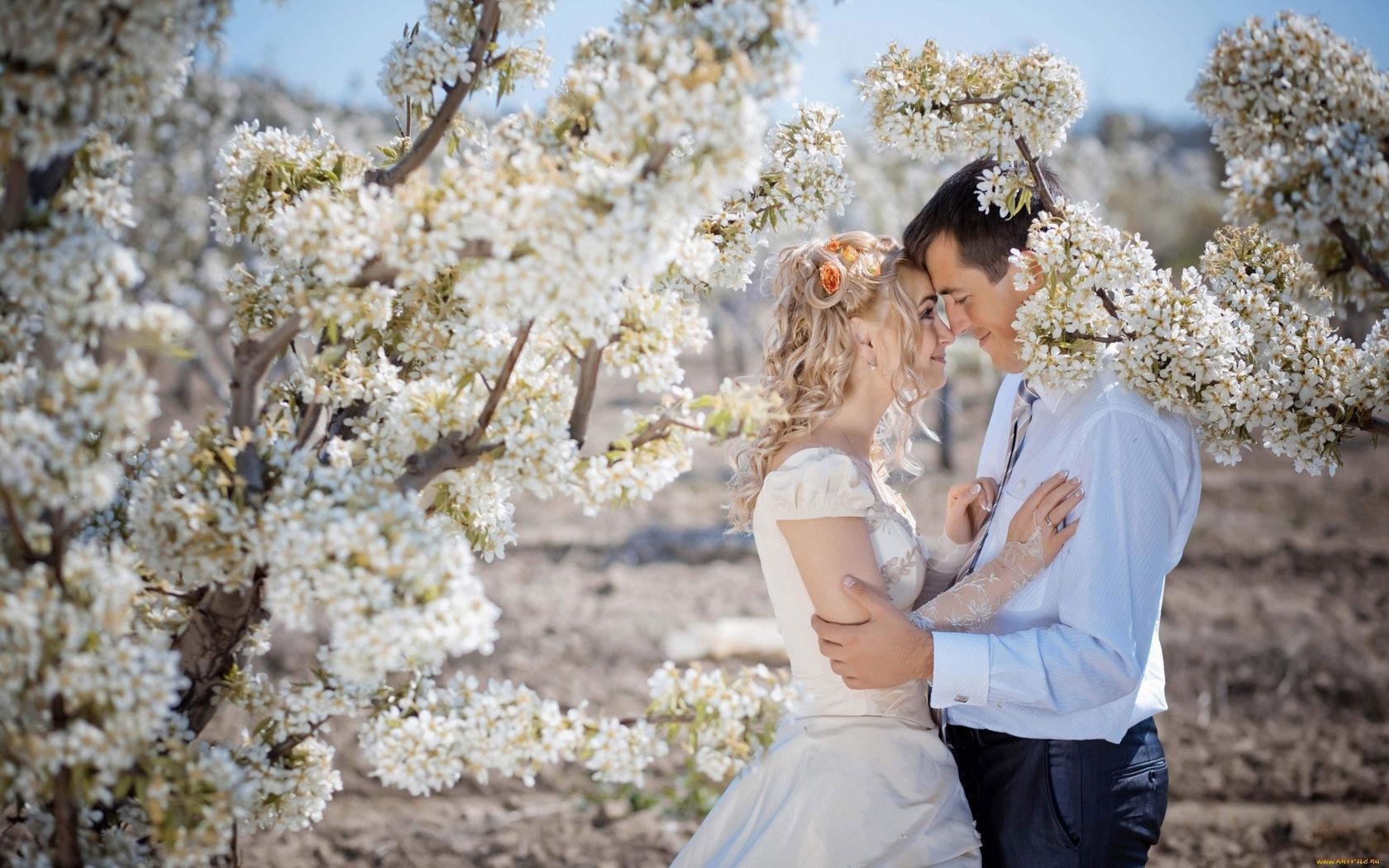 Обои Весна, цветение, влюбленные, цветы. Настроения foto 10