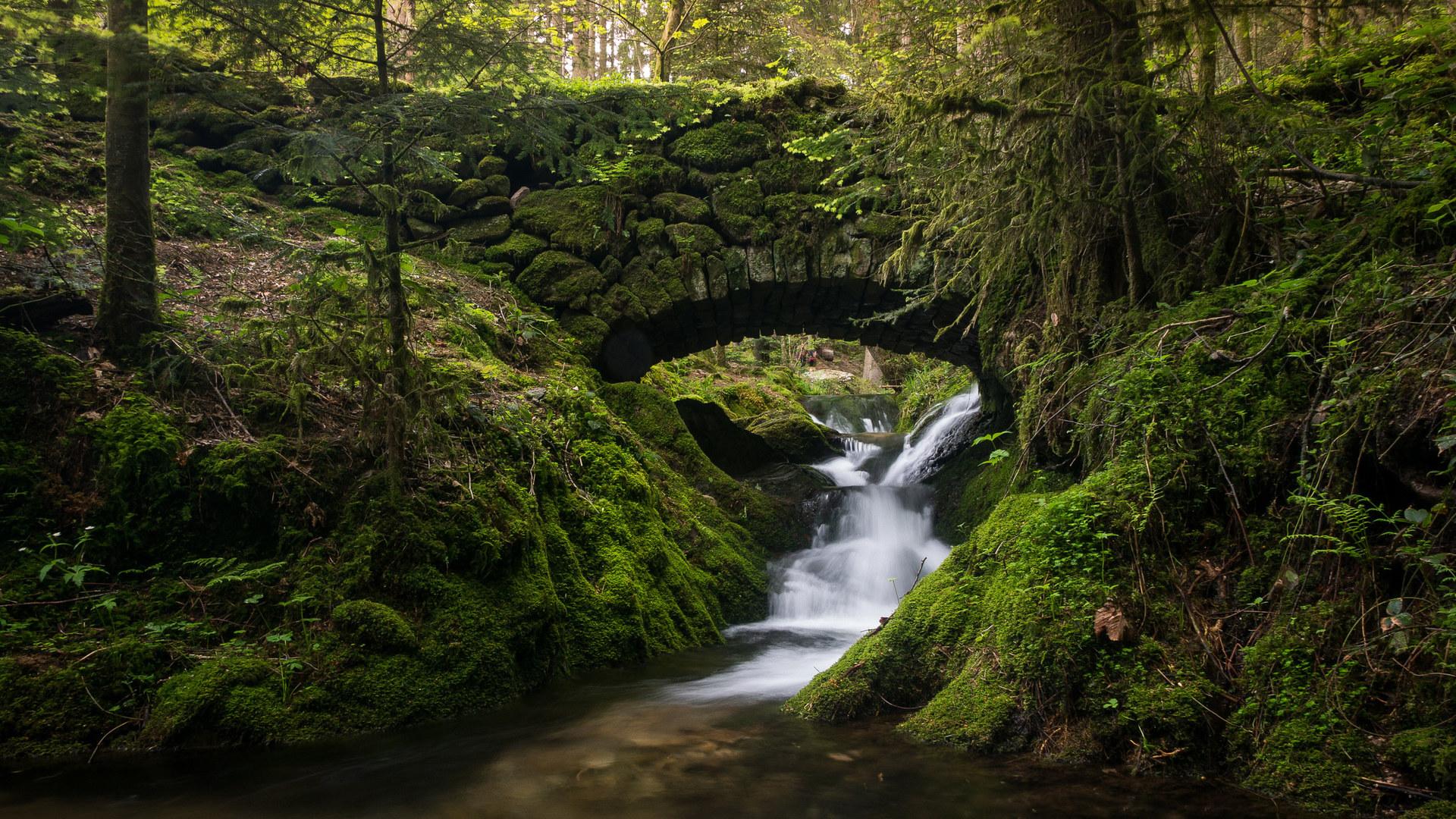Картинки широкоформатные с видами природы