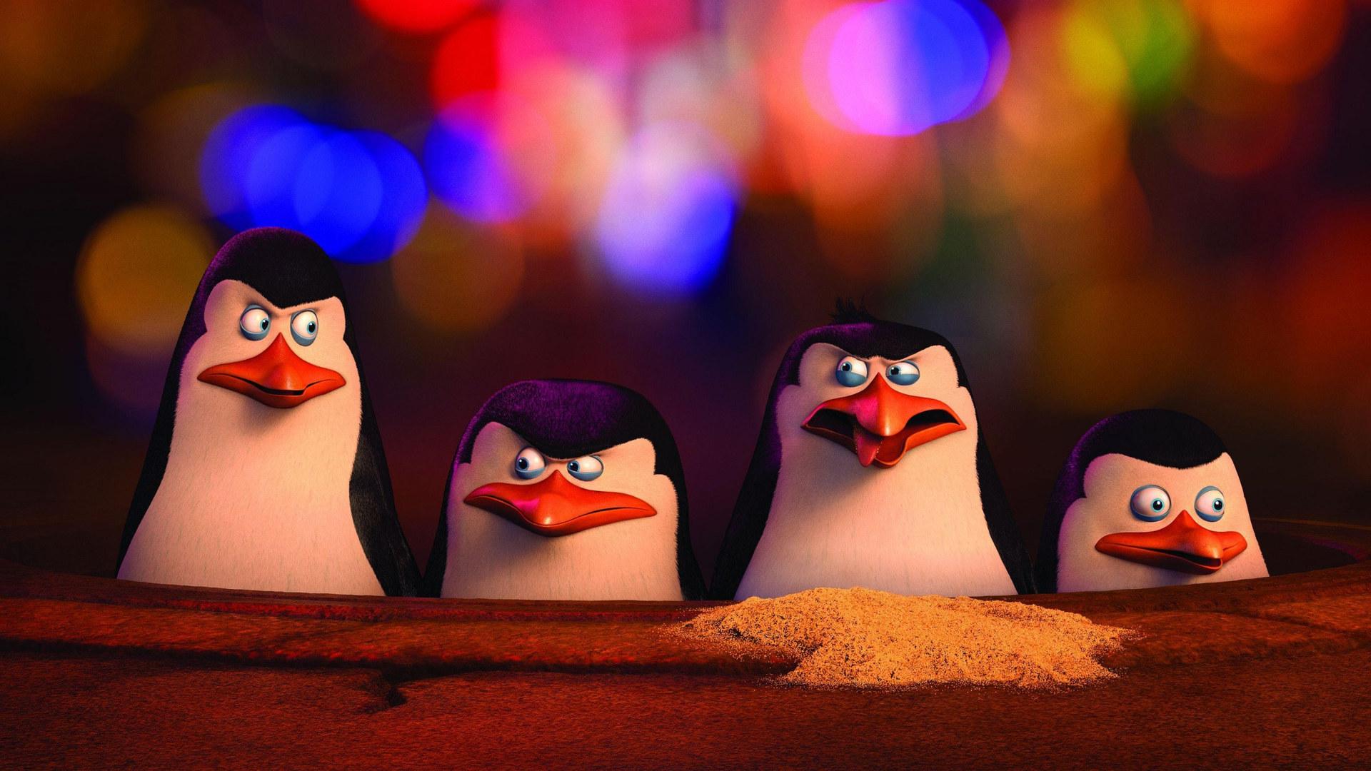 Смотреть пингвины из мадагаскара 5 фотография