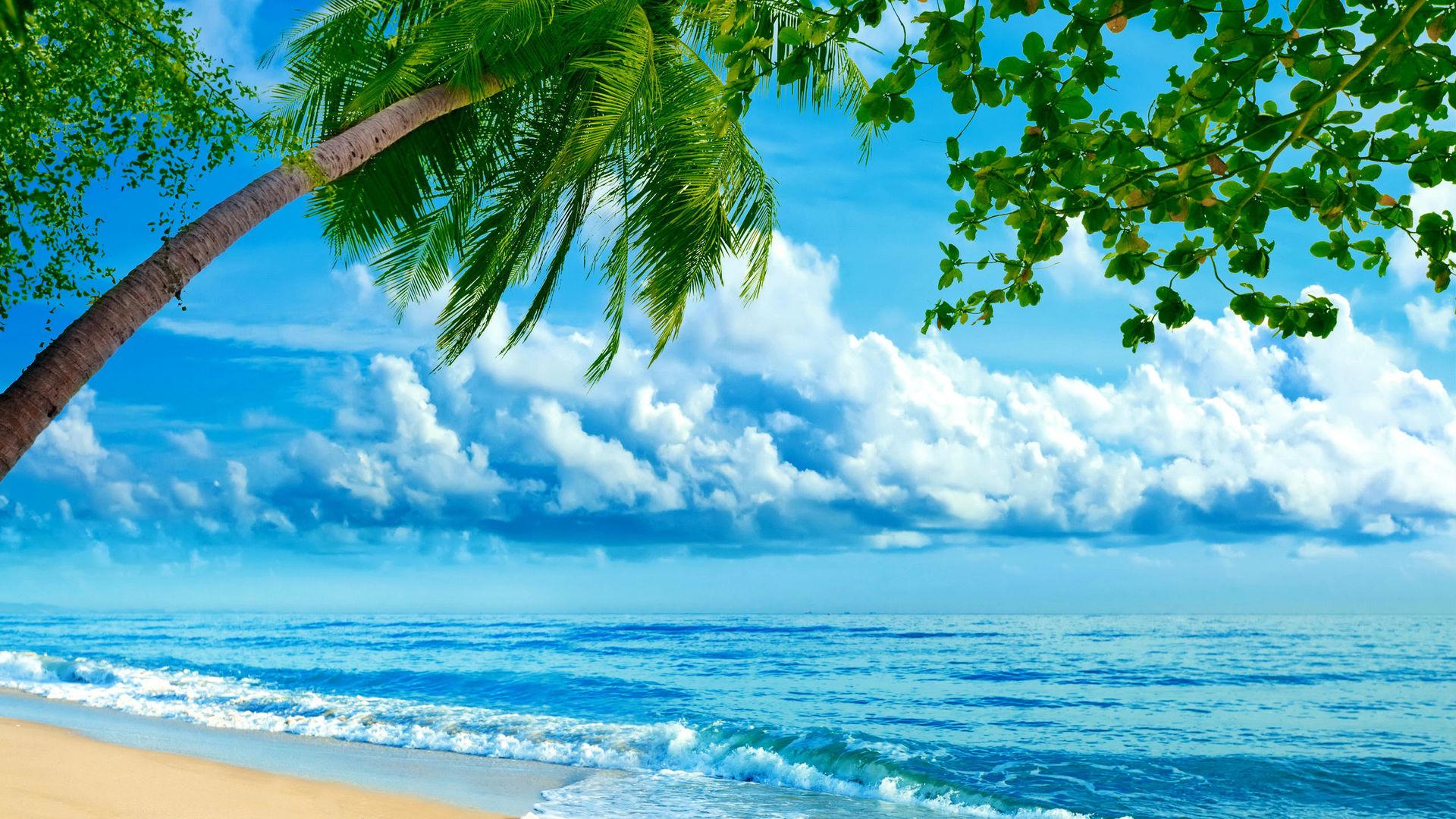 скачать картинки рабочий бесплатно на лето