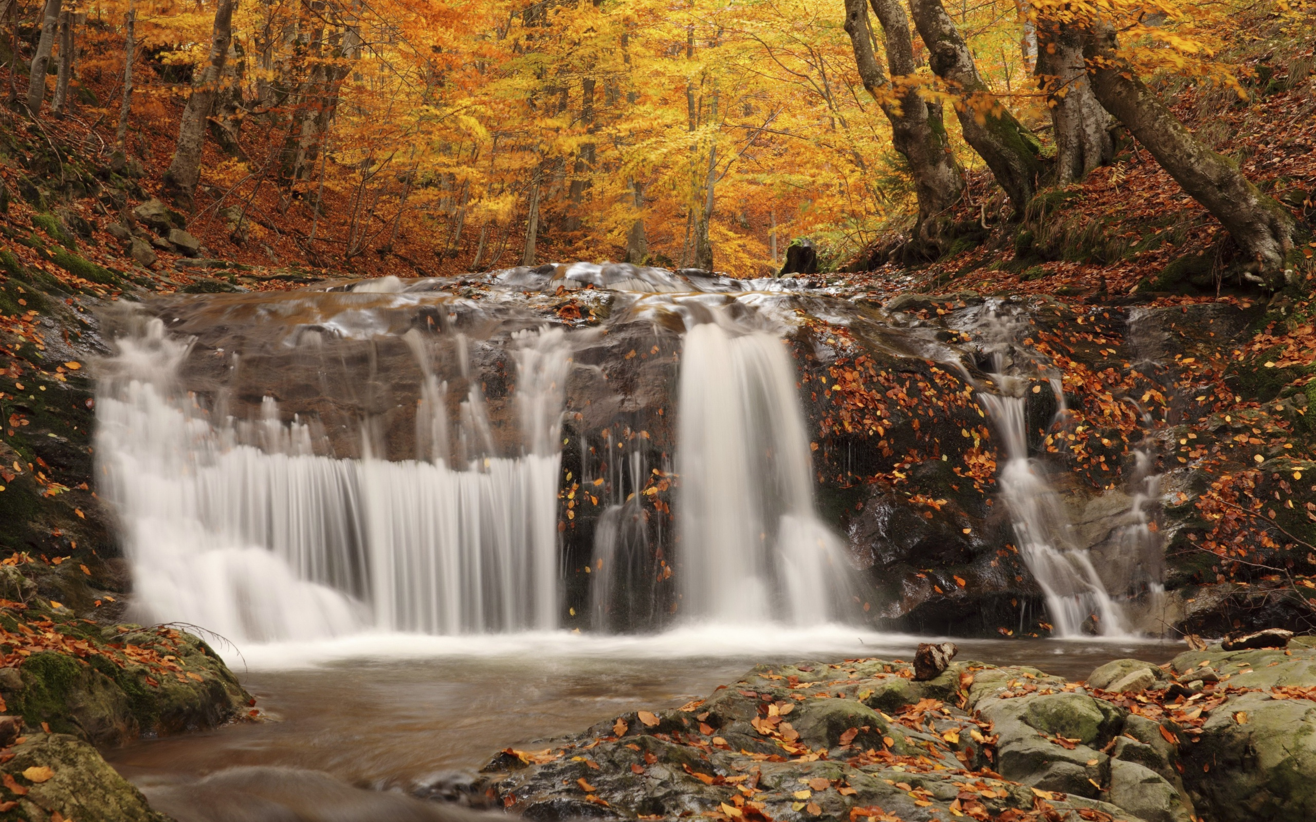 Обои водопад, осень, Пейзаж. Пейзажи foto 17