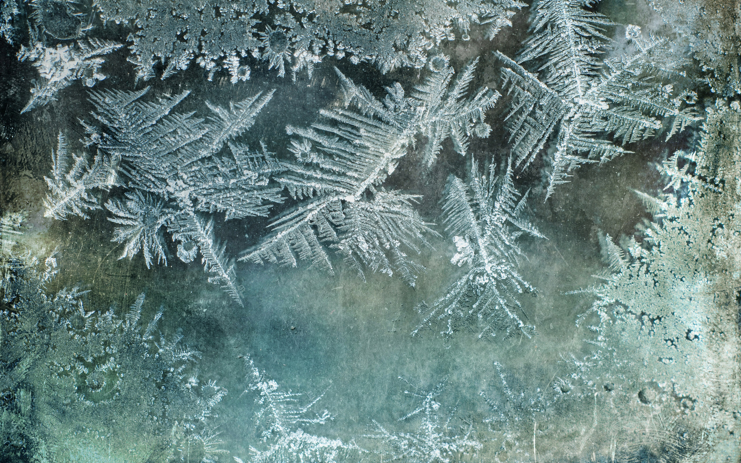 Картинка На Рабочий Стол Зима Прикольные